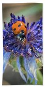 Ladybug On Purple Flower Beach Towel