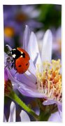 Ladybug Shows Her Heart Beach Towel