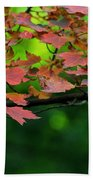 Laid Upon The Branches Beach Towel