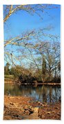 Lake And Trees In Early Spring Beach Towel