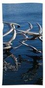 Lake Birds Beach Towel