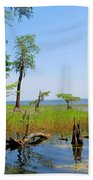 Lake Waccamaw Nc Beach Towel