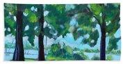 Lakeside Shadows Beach Towel