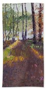 Lakeside Shadows Beach Towel