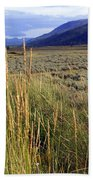 Lamar Valley 2 Beach Towel
