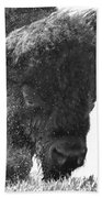 Lamar Valley Bison Black And White Beach Towel