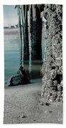 Land Meets Water Nature Photograph Beach Towel