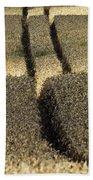 Lanes On Cornfield Beach Towel