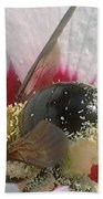 Large Bumble Bee In Flower Beach Towel