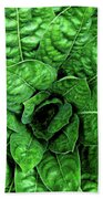 Large Green Display Of Concentric Leaves Beach Towel