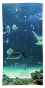 Large Sawfish And Other Fishes Swimming In A Large Aquarium Beach Towel
