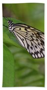 Large White Tree Nymph Butterfly On Green Foliage Beach Towel