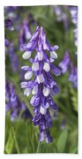 Larkspur Beach Towel