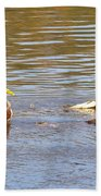 Last Mallard Of Autumn         October       Indiana    Beach Towel