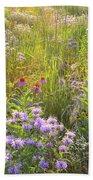 Last Rays Of Sun Light Wildflowers In Moraine Hills Sp Beach Towel