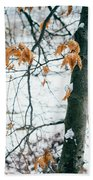 Last Snowy Leaves Beach Towel