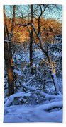 Late Afternoon Winter Light Beach Towel