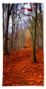 Late Fall In The Woods Beach Towel