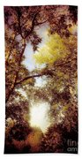 Late Summer View Of Sky And Trees Beach Towel