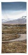 Lava Field In Iceland Beach Sheet