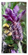 Lavender And Busy Bee. Beach Towel