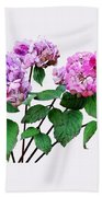 Lavender And Rose Hydrangeas Beach Towel