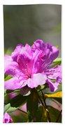 Lavender Rhododendrun Beach Towel