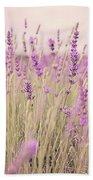 Lavender Blossom Beach Sheet