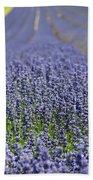 Lavender Dreams Beach Towel
