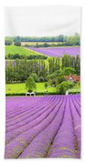Lavender Farms In Sevenoaks Beach Towel