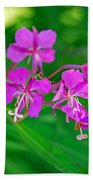 Lavender Fireweed Beach Towel