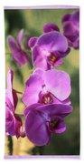 Lavender Orchids Beach Towel