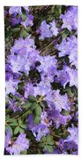 Lavender Rhododendrons Beach Towel