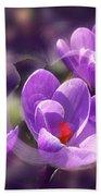 Lavender Spring Beach Towel