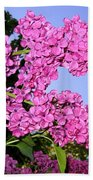 Lavish Lilacs Beach Towel