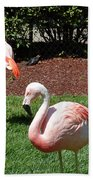 Lawn Ornaments Beach Towel