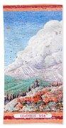 Leadville Colorado Vintage Billboard Beach Towel