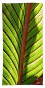 Leaf Abstract  23 Beach Towel