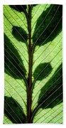 Leaf Detail Beach Towel