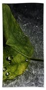 Leaf Droplets Beach Towel