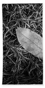 Leaf In Phlox Nature Photograph Beach Towel
