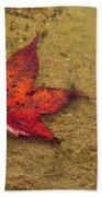 Leaf In The Rain Nature Photograph Beach Towel