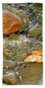 Leaf, Rock Leaf Beach Towel