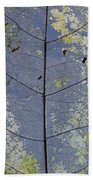 Leaf Structure Beach Towel by Debbie Cundy