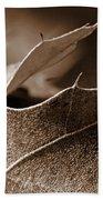 Leaf Study In Sepia II Beach Towel