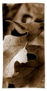 Leaf Study In Sepia IIi Beach Towel
