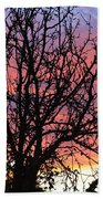 Leafless Silhouette Beach Towel