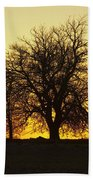 Leafless Tree Against Sunset Sky Beach Towel