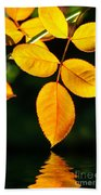 Leafs Over Water Beach Towel by Carlos Caetano