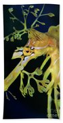 Leafy Sea Dragon Beach Towel by Mariola Bitner